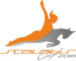 Международные соревнования по прыжкам на батуте «SCALABISCUP»_logotype