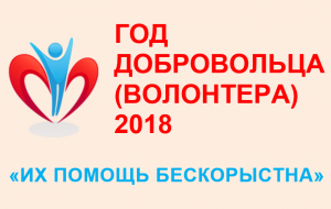 2018 год — Год добровольца (волонтера) в России - logo